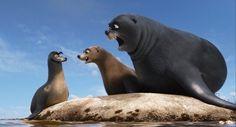 """""""GERALD!! Get off Gerald!!"""""""