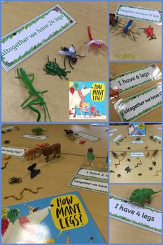 How Many Legs book enhancement. I made the cards using Twinkl Create – kindergarden Math Addition, Addition And Subtraction, Spring Activities, Math Activities, Maths Eyfs, Numeracy, Eyfs Curriculum, Minibeasts Eyfs, Early Years Maths