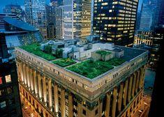 Green roof, il municipio di Chicago    Chicago, una delle città americane più ecologiche, il programma di diffusione dei greenroof è partito 10 anni fa: oggi ci sono più di 200 green roof (uno addirittura in cima al comune) per un totale di quasi 300000 mq. I green roof  contribuiscono a prevenire gli allagamenti in caso di piogge battenti, trattengono l'acqua e la rilasciano lentamente