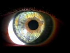 The Great Awakening Part 6 Conscious Acceleration - YouTube