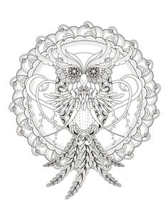 owl coloring page for adults                                                                                                                                                                                 More
