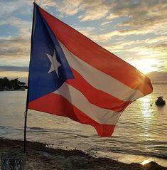 Puerto Rican Culture, Puerto Ricans, Flag, Canada, Country, Art, Rural Area, Kunst, Science
