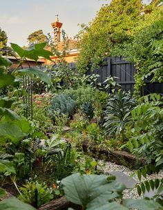 Backyard Vegetable Gardens, Potager Garden, Veg Garden, Edible Garden, Melbourne Garden, Stone Path, Family Garden, The Design Files, Flowers Perennials