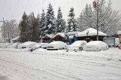 Çamlıyayla ve Gülek Kar Fotoğrafları (Karışık) | Sayfa 12