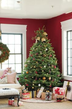 Colorful Classic | Use our traditional and themed decorating ideas to make your tree extra special this holiday season. Christmas trees are the centerpiece of the home and the holiday season. A beautifully decorated Christmas tree will evoke memories of the holidays for years to come. The first rule is to pick the best tree for your space, whether that be shorter and wider or taller and slimmer, and then the decorating fun begins. Fill it with colorful lights and ornaments, wrap in ribbon…