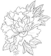 japanese peony drawings - Google Search