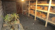 The 8 Fundamentals To Digging A Root Cellar | Off The Grid News