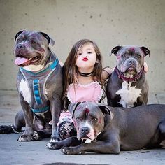 OMG #kissattack!! #puckerupbuttercup #pitbulllove #agirlandherdogs #pupfamily #ScarleysBowski // Thank you @cheryllynnphotography ❤ #valentinesphotoshoot #dontbullymybreed ❤