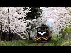 津軽鉄道 芦野公園駅の風景 2014/4/30 - YouTube