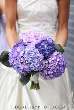 gorgeous bouquet....and in my flowers!