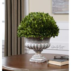 Found it at Wayfair - Preserved Boxwood Garden Urn Topiary in Planter