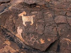 """Pony Hills Petroglyph 54    A very """"Mimbres-like"""" sheep petroglyph. The petroglyphs at Pony Hills north of Deming, New Mexico are thought to have been made by the Jornada-Mogollon culture which is the same group that are famous for their Mimbres Pottery. Turtle shapes are popular too."""