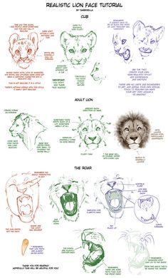 Löwe zeichnen