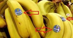 Be Careful What Are You Buying: Did You Know What Does The Stickers on The Fruits Mean? | Dinos Mark