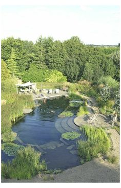 Natural Swimming Ponds, Natural Pond, Swimming Pools Backyard, Ponds Backyard, Swimming Pool Designs, Lap Pools, Indoor Pools, Landscape Design Plans, Landscape Edging