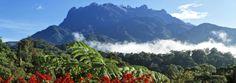 Mount Kinabalu, Sabah, Borneo, Malaysia - Asia