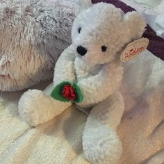 ✨NWT✨ White Bear Plush  ✨NWT✨ White Bear Plush. Very soft white bear holding a red flower between its paws. Also has an sheer ivory ribbon around his neck. No flaws. Great for a Valentine's Day gift! Other