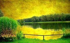 Paesaggi giallo fiume