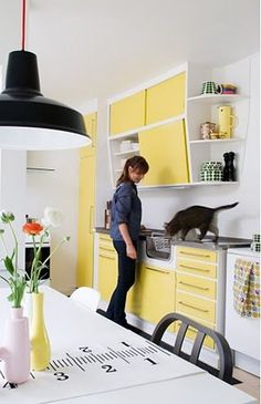 yellow cupboard/white trim.