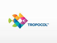 11-vivid-color-logo