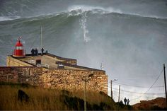 Team Updates Electric adds Nazaré photographer and activist as ambassador Surfersvillage Global Surf News, 27 February, 2015 -Oporto, Portugal - Electric has welcomed Portuguese-born photographer Tó Mané to their growing team.Tó Mané's name became synonymous with Nazaré, as his photos of the Atlantic big-wave behemoth went viral in 2013. In 1998, Tó Mané published his first picture in a surf magazine, and from that moment on those passions became inseparable.
