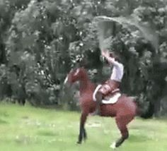 Man + horse + long jumprope = WOW   (GIF)