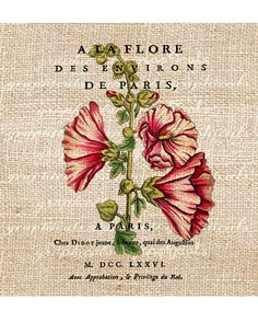 Paris digital download image Vintage French title red hollyhocks flowers transfer to fabric paper burlap pillows tote bags No. 569. $1.00, via Etsy.