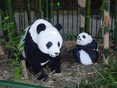 Lego pandas :)