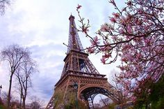 The tower that stood still through times - the landmark of Paris. No cure if you fall in love with it as it's cancerous 😝 #paris #effieltower #effiel #loveatfirstsight #loveparis #paristrip #holiday #honeymoon #travel #trip #travelgram #travelphotography #amazing #imposing #wonderfulplaces #beautifuldestinations #beautifulplaces #luxurytravel #france #lovers #lazeinmaldives #lazingwanderer @lazingwanderer by bryankhailing. loveatfirstsight #travelgram #amazing #paristrip #beautifulplaces…