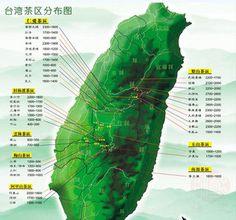TaiWan Oolong Tea - chineseteaconnoisseur
