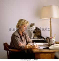 Self Confidence And Cat Stock Photos & Self Confidence And Cat ...