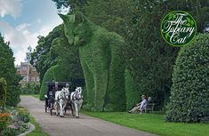 The Topiary Cat at Hatfield House by Rich Saunders Formal Gardens, Outdoor Gardens, Modern Gardens, Japanese Gardens, Small Gardens, Amazing Gardens, Beautiful Gardens, Hatfield House, Topiary Garden