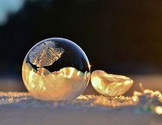 Seifenblasen wie aus einer Märchenwelt
