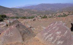 El Coligüe - Chile