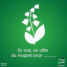Une nostalgie pour les muguets 🥀💮🌸💐🌺🌻 #zefrench #francais #learnfrench #muguet #fleurs #flowerpower #lilyof