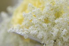 How to Make Elderflower Syrup