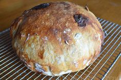 Easy No Knead Bread: White Chocolate Pecan    by friedalovesbread #Bread #Pecan #Chocolate