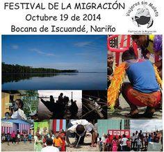 Actividades Dia Internacional de las Aves Migratorias durante el Festival de la Migracion. Colombia  Asociación Calidris  Dia Día Internacional de las Aves Migratorias - Colombia #BirdDay