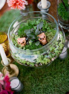 wedding terrariums