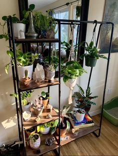 A community focused on the discussion, care, and well-being of houseplants! Room With Plants, House Plants Decor, Plant Decor, Plant Aesthetic, Aesthetic Room Decor, Plantas Indoor, Decoration Plante, Plant Shelves, Room Ideas Bedroom