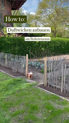 Garden Deco, Gardening, Container Flowers, Fence Design, Get Outside, Flower Beds, Dried Flowers, Planting Flowers, Flower Arrangements