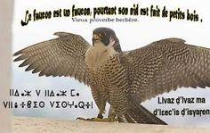 """Résultat de recherche d'images pour """"chants kabyles"""""""