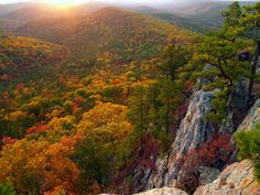 Ouachita National Forest in Oklahoma.  Where people in North Texas go to experience actual fall.