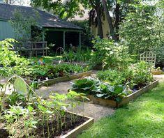 https://flic.kr/p/ctqRkd | Raised Bed Garden | Vegetables, flowers, and fruit.