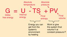 Gibbs free energy, denoted G , combines enthalpy and entropy into a single value. The change in free energy, ΔG , is equal to the sum of the enthalpy plus the product of the temperature and entropy … Chemistry Notes, Physical Chemistry, Science Chemistry, Science And Technology, Advanced Physics, Learn Physics, Health Essay, Abstract Science, Physics Formulas