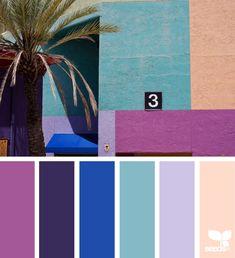 design seeds X ello | artist invite 02 featured artist : @danschumannmraz