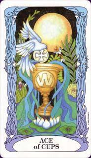 Tarot of the Moon Garden, Ace of Cups