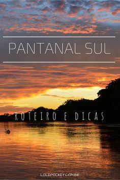 Roteiro para 2, 3 ou 4 dias no Pantanal Sul, em Corumbá. Um passeio que dá perfeitamente para combinar com Bonito!