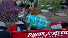 Fleece Dog Coat, Extra Small, Blue, Aqua, Lime, Yellow, and Blue Plaid with Green Fleece, www.TheThimbleAndHound.com