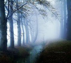 The Dark Days by *Nelleke
